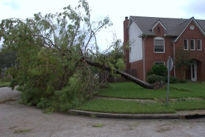 Hurricane Ike hit Houston 6 weeks after we moved in to our new house.